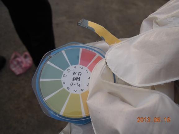 含金屬鈉白色條狀固體物pH值為14