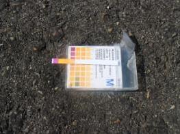 溝渠廢液呈現酸性(pH為1)
