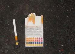 pH試紙測量結果