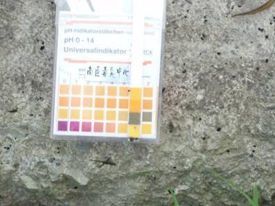 以pH試紙進行現場檢測