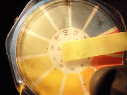 廠外雨水溝pH量測