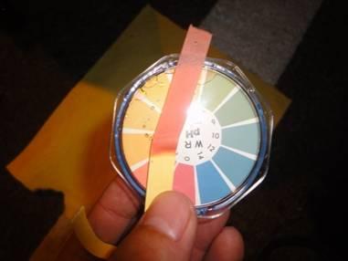 使用pH試紙進行量測